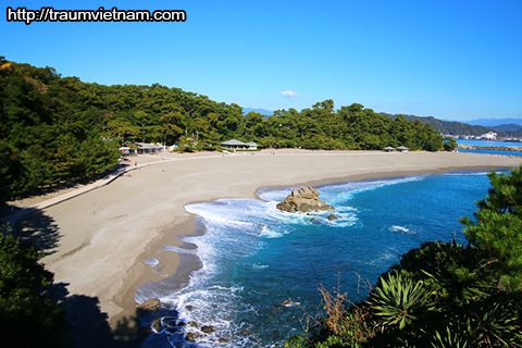 Bãi biểnKatsurahama - tỉnh Kochi Nhật Bản