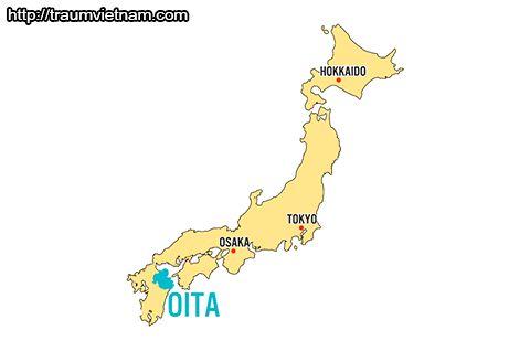 Vị trí địa lý của tỉnh Oita Nhật Bản