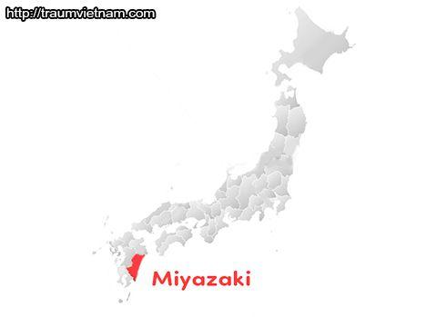 Vị trí địa lý của tỉnh Miyazaki Nhật Bản