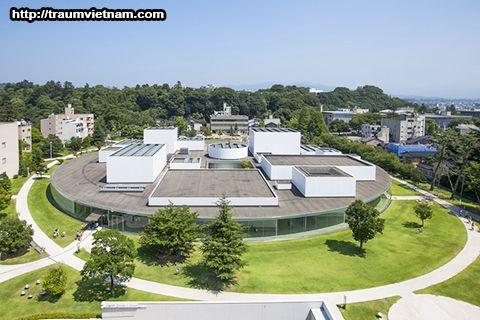 Bảo tàng mỹ thuật thế kỷ 21 (Kanazawa)