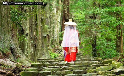 Con đường dốc Kumano Kodo Daimon-zaka