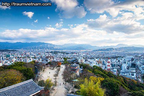 Đặc điểm kinh tế khu vực Ehime Nhật Bản