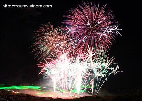 Lễ hội pháo hoa ở Shiga