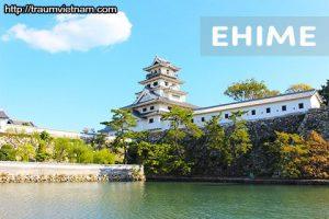 Tỉnh Ehime Nhật Bản - hành trình về đất thánh Shikoku