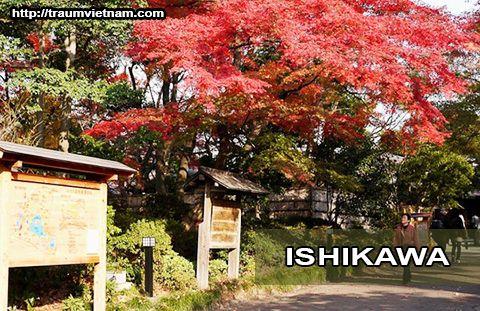 Tỉnh Ishikawa Nhật Bản - Vùng đất vàng của xứ phù tang