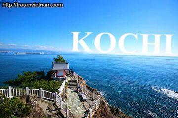 Tỉnh Kochi Nhật Bản – vùng đất của rượu và cá