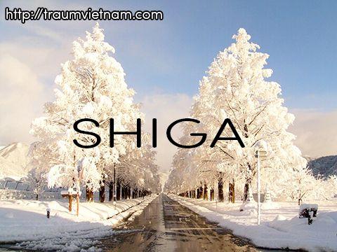 Tỉnh Shiga Nhật Bản - nơi chứa đựng hồ nước ngọt lớn nhất xứ phù tang