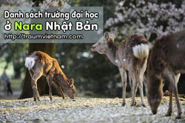 Danh sách các trường đại học ở Nara Nhật Bản