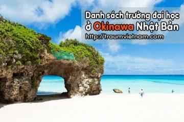 Danh sách các trường đại học ở Okinawa Nhật Bản