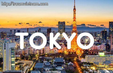 Tuyển 2 nữ làm kỹ thuật viên IT tại Tokyo phỏng vấn cuối 3/2018