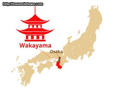 Vị trí địa lý của tỉnh Wakayama Nhật Bản