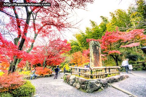 VườnKenrokuen - tỉnh Ishikawa Nhật Bản