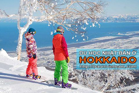 Du học ở Hokkaido Nhật Bản - điểm đến lý tưởng