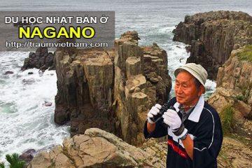 Du học ở Nagano Nhật Bản – nơi ở của những người sống thọ nhất Japan