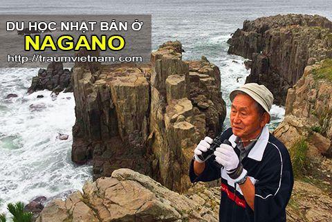 Du học ở Nagano Nhật Bản - nơi ở của những người sống thọ nhất Japan