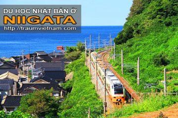 Du học ở Niigata Nhật Bản – vùng đất không nên bỏ lỡ