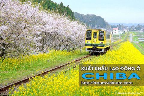 Xuất khẩu lao động ở Chiba Nhật Bản - Bay nhanh