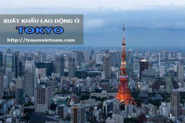 Xuất khẩu lao động ở Tokyo Nhật Bản – Làm thêm nhiều