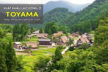 Xuất khẩu lao động ở Toyama Nhật Bản – lương cao