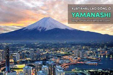 Xuất khẩu lao động ở Yamanashi Nhật Bản – uy tín