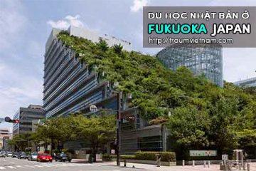 Du học ở Fukuoka Nhật Bản – nơi quy tụ của du học sinh Việt Nam