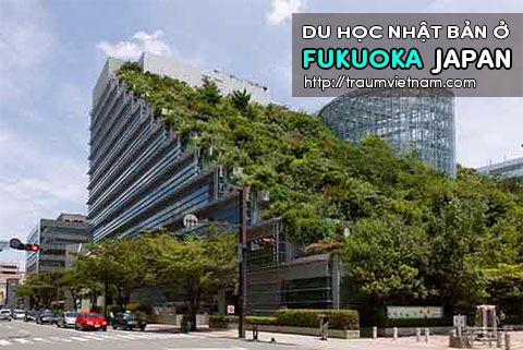Du học ở Fukuoka Nhật Bản - nơi quy tụ của du học sinh Việt Nam
