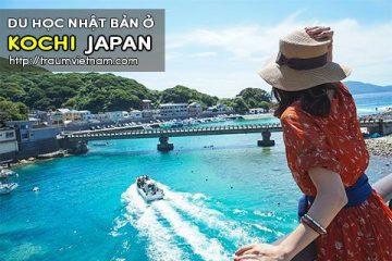Du học ở Kochi Nhật Bản – vùng đất tuyệt vời