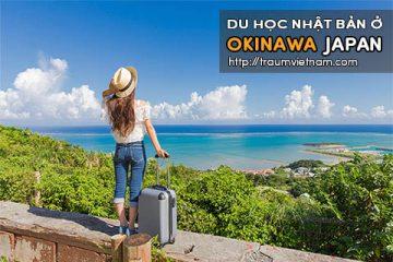 Du học ở Okinawa Nhật Bản – du học Nhật Bản tự túc