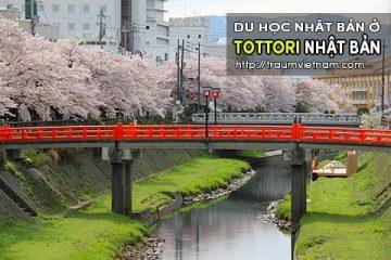 Du học ở Tottori Nhật Bản – bình yên và đáng sống