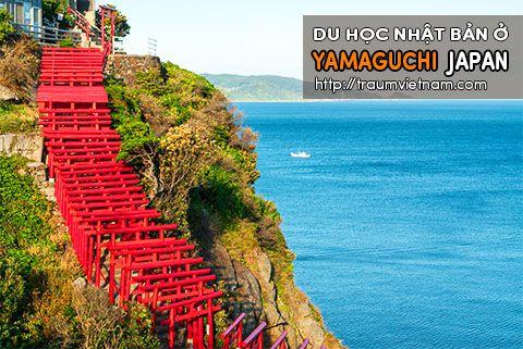 Du học ở Yamaguchi Nhật Bản - một Japan thu nhỏ