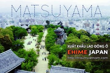 Xuất khẩu lao động ở Ehime Nhật Bản – bay nhanh