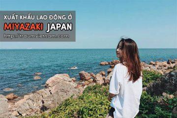 Xuất khẩu lao động ở Miyazaki Nhật Bản – lương cao