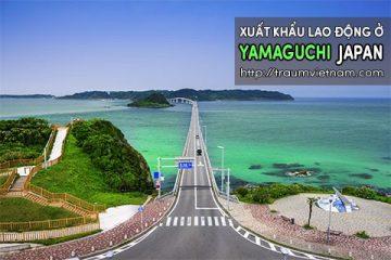 Xuất khẩu lao động ở Yamaguchi Nhật Bản – phí thấp