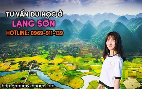 Tư vấn du học Nhật Bản ở Lạng Sơn uy tín miễn phí