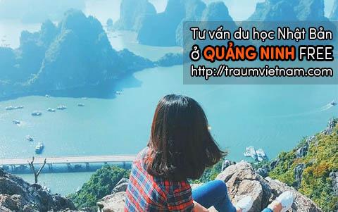 Tư vấn du học Nhật Bản ở Quảng Ninh uy tín miễn phí