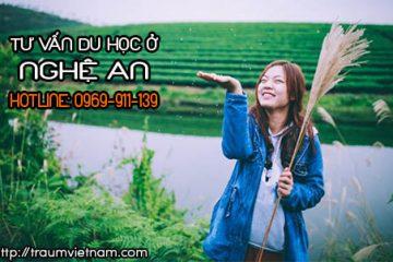 Tư vấn du học Nhật Bản ở Nghệ An free qua điện thoại