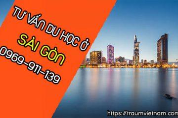 Tư vấn du học Nhật Bản ở Sài Gòn miễn phí 0969 911 139